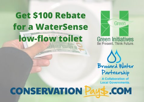 Get a $100 rebate for a watersense low flow toilet