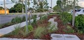 bioswale at Fire Station 7