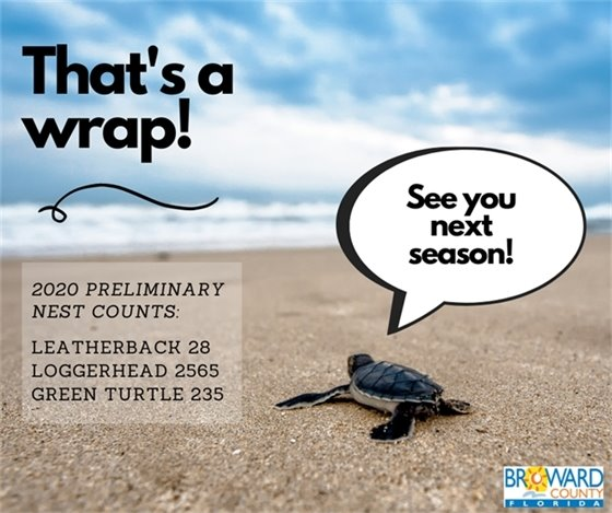 Final sea turtle nesting season count is 28 leatherback nests, 2565 loggerhead nests, and 235 green turtle nests